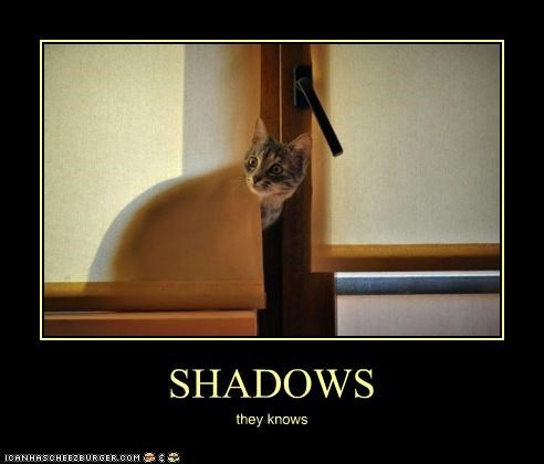 SHADOWS they knows