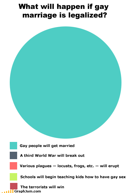 civil rights controversy gay marriage Pie Chart