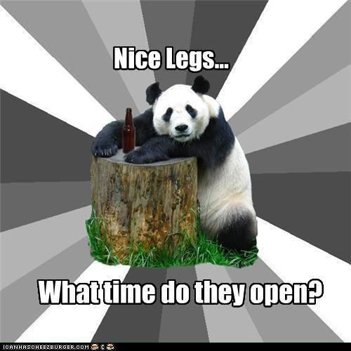 Bad Pickup Line Panda,nice legs,open