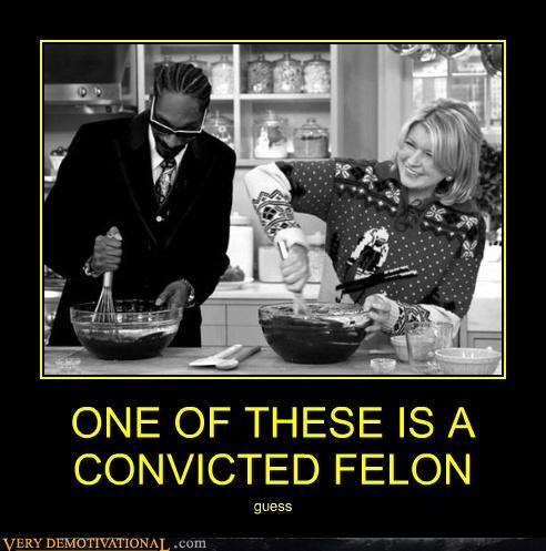 cooking felon Hall of Fame Martha Stewart snoop dogg