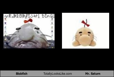 Blobfish dressed up mr-saturn toys wtf