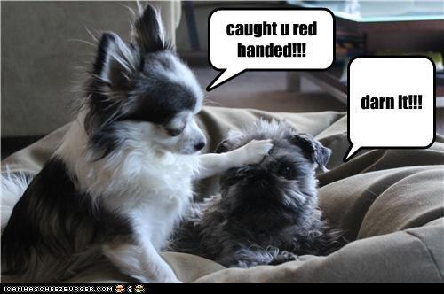 caught u red handed!!! darn it!!!