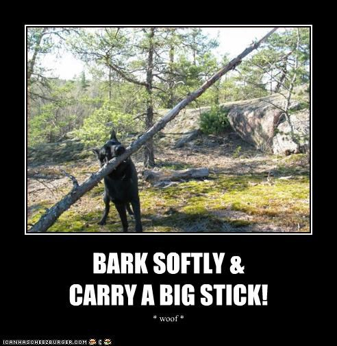 advice,bark,big,carry,famous,quote,reinterpretation,softly,stick,teddy roosevelt,whatbreed