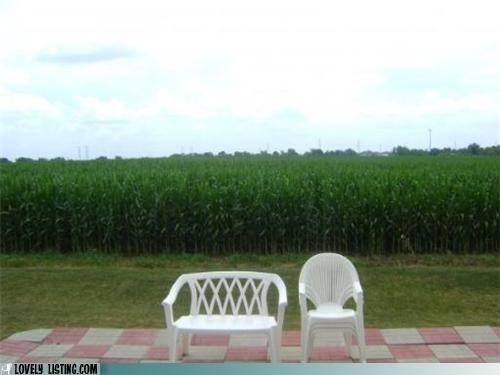 chair chairturday - 4604572160