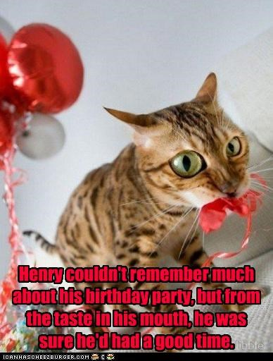 balloon birthday cant-remember caption captioned cat forgot fun good time Party taste - 4605101312