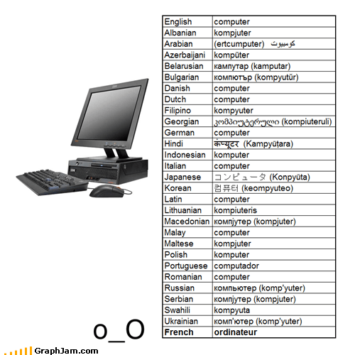 computers infographic languages wtf