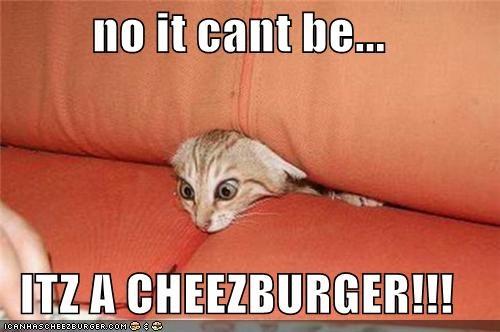 Cheezburger Image 4605240320