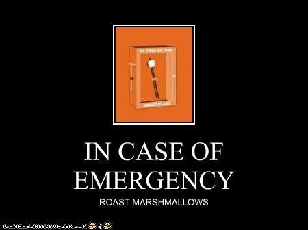 IN CASE OF EMERGENCY ROAST MARSHMALLOWS