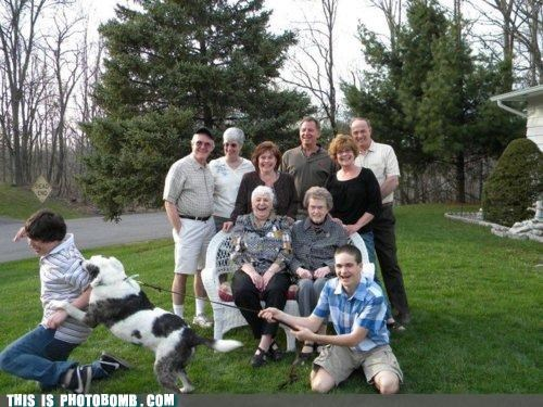 attack,dogs,family photo,family portrait