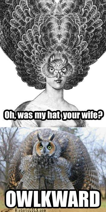 animal fashion funny Owl - 4606624256