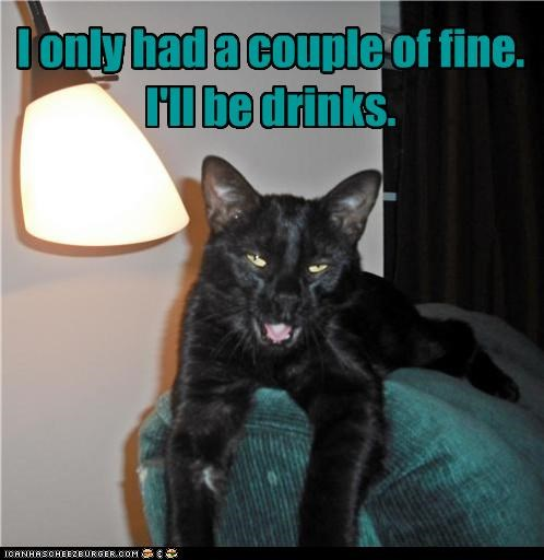 caption captioned cat confused drinking drinks drunk fine Hall of Fame order word order words - 4608295168