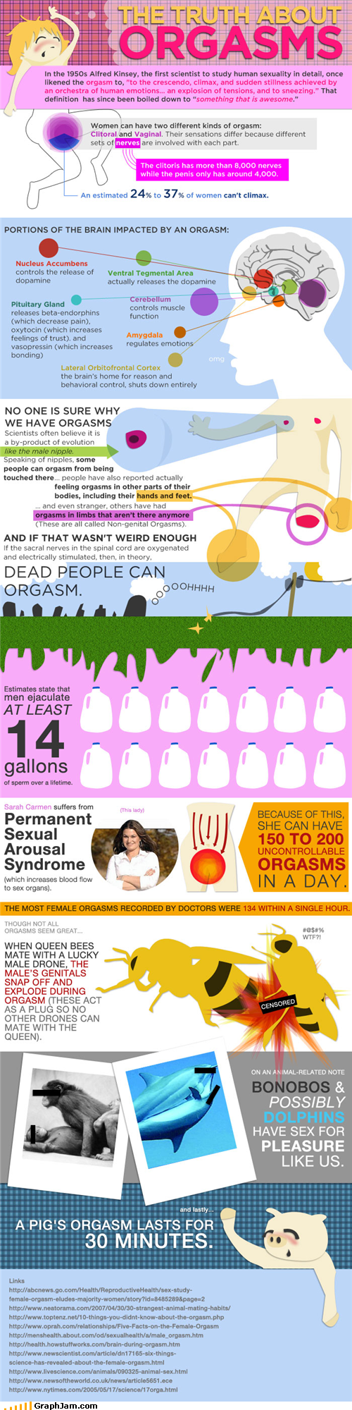 Dead People,infographic,orgasms,sex education