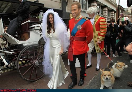 funny wedding photos kate middleton prince william royal wedding Royal Wedding Madness