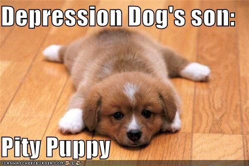 Depression Dog's son: Pity Puppy
