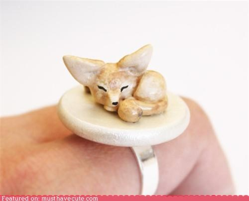 accessories,ears,fennec,fennec fox,fox,Jewelry,ring,sleepy