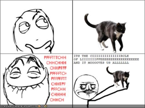 me gusta memecats Memes movies Rage Comics the lion king - 4613120768