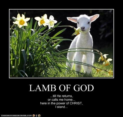 LAMB OF GOD ...till He returns, or calls me home... here in the power of CHRIST, I stand...