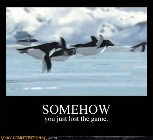 flying,game,Hall of Fame,lost,penguin