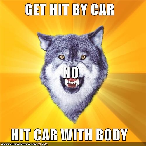 Courage Wolf,hit by car,hit car
