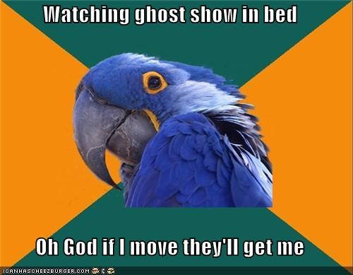 bed,dont-move,ghosts,Paranoid Parrot