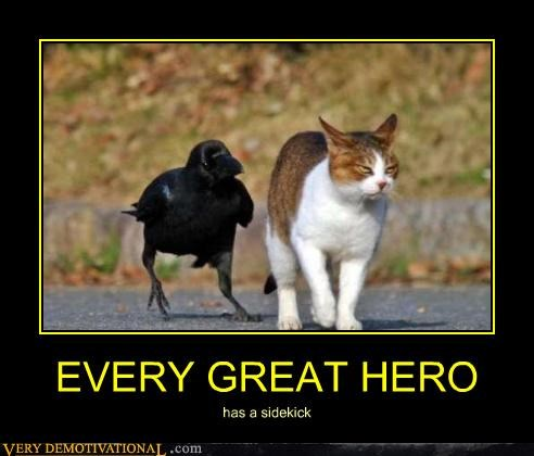 cat,crow,hero,sidekick
