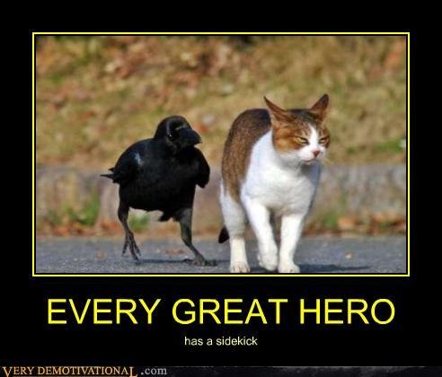 cat crow hero sidekick - 4615233536