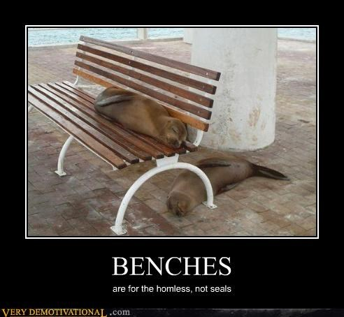 benches homeless seals