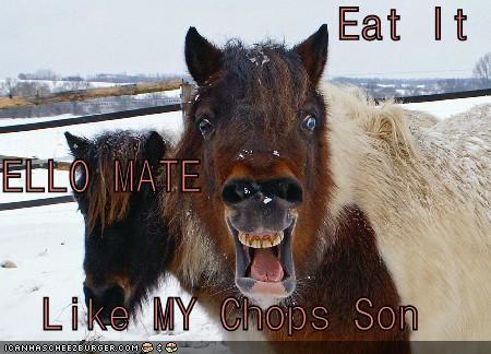 Cheezburger Image 4616387072