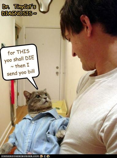 Dr. TinyCat's DIAGNOSIS ~ for THIS yoo shall DIE ~ then I send yoo bill