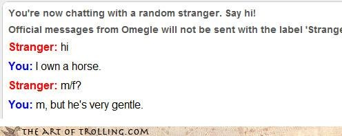 disconnect,gentle,horse,Omegle