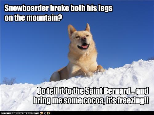 Snowboarder broke both his legs on the mountain? Go tell it to the Saint Bernard... and bring me some cocoa, it's freezing!!