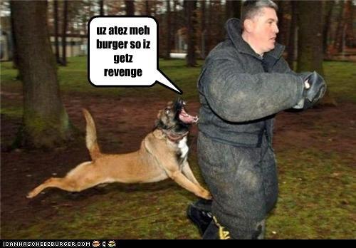 Cheezburger Image 4617704704