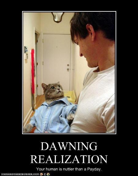 afraid candy caption captioned cat comparison crazy dressed up human realization - 4617854720