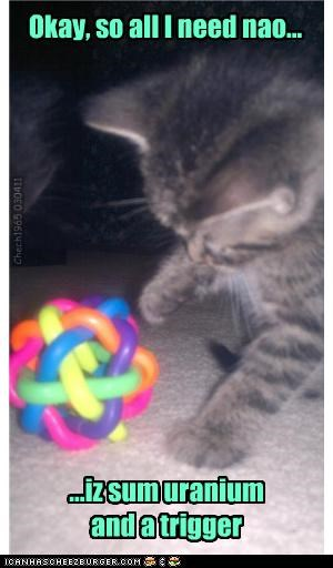 all ball bomb caption captioned cat kitten need now nuclear physics science trigger uranium - 4617956096