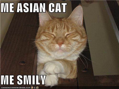 ME ASIAN CAT   ME SMILY