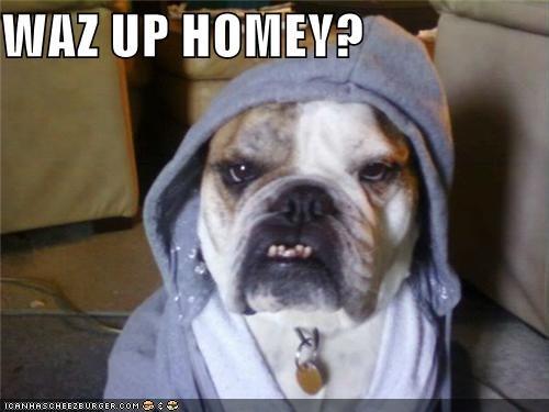 WAZ UP HOMEY?