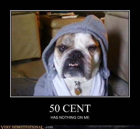 50 cent animals awesome dogs hoody