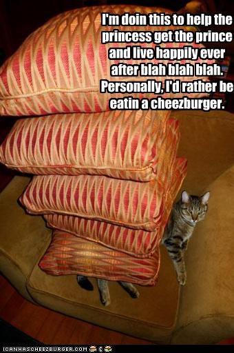 Cheezburger Image 4618394112