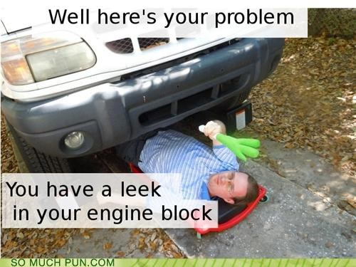 block,car,double meaning,engine,examining,homophone,leak,leek,mechanic,problem