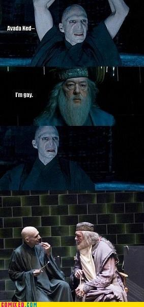 awesome dumbledore gay Harry Potter - 4620691968