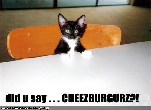 Cheezburger Image 462107392