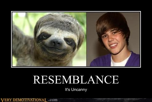 justin bieber resemblance sloth - 4621890560