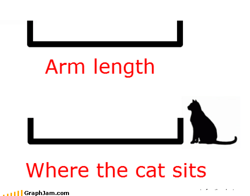 Cats distance infographic pets