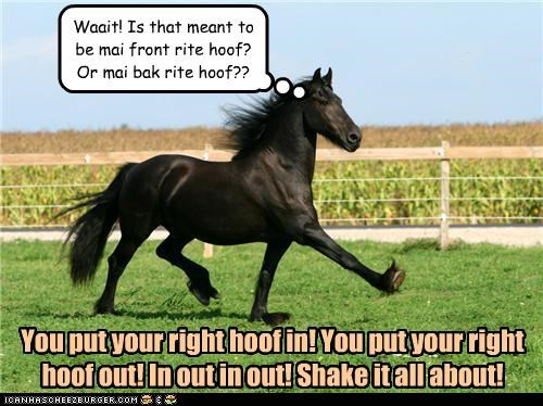You put your right hoof in! You put your right hoof out! In out in out! Shake it all about! Waait! Is that meant to be mai front rite hoof? Or mai bak rite hoof??