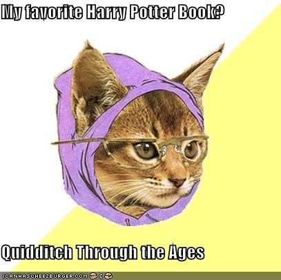 animemes Harry Potter Hipster Kitty quidditch voldemort - 4623063552