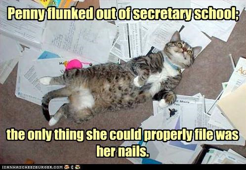 caption,captioned,cat,double meaning,FAIL,file,flunked,nails,properly,pun,school,secretary