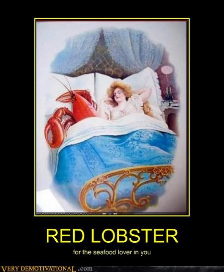 red lobster seafood sexy times - 4623577088