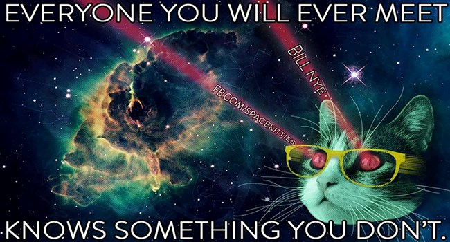 quotes cats in space Cats funny space - 4623621