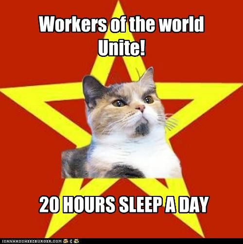 Workers of the world Unite! 20 HOURS SLEEP A DAY