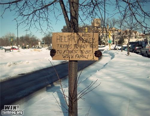 clever,homeless sign,homeless signs,signs,tree